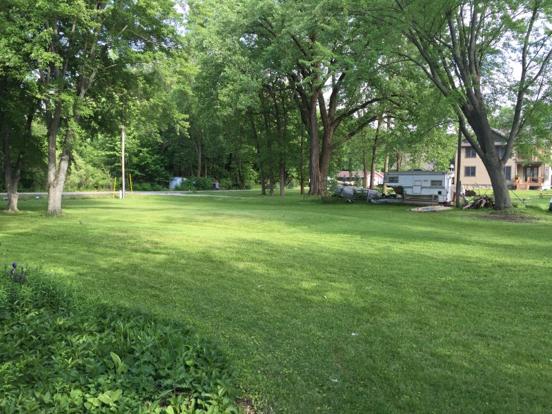 Large open yard space for family to enjoy.