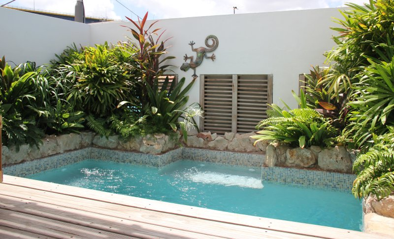 Private plunge pool. Great for a quick dip to cool off. 2.5x3.5M.