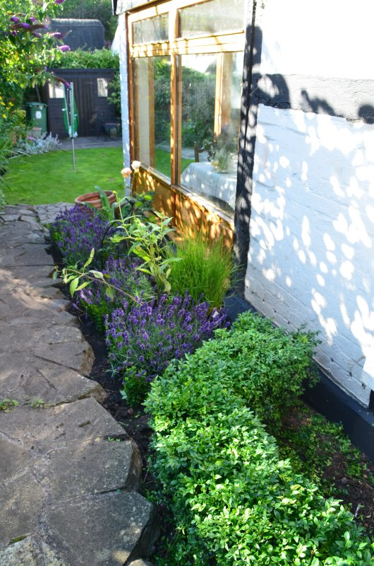 We are always improving the garden as it matures at Midsomer Cottage.