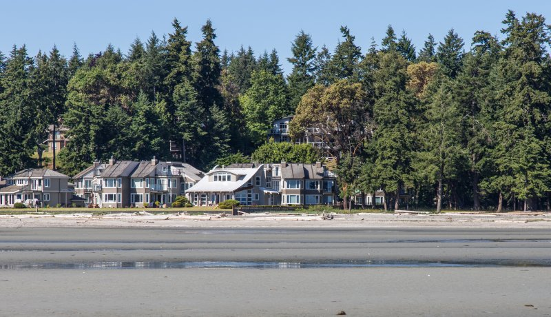 Looking back at Tanglewood from the beach