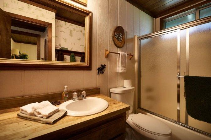 Salle de bains avec douche / baignoire.