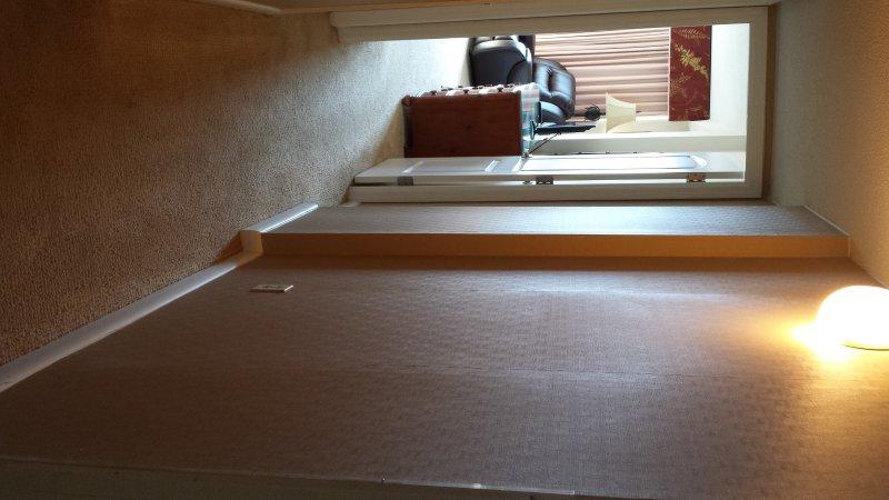 Hallway to spacious master bedroom