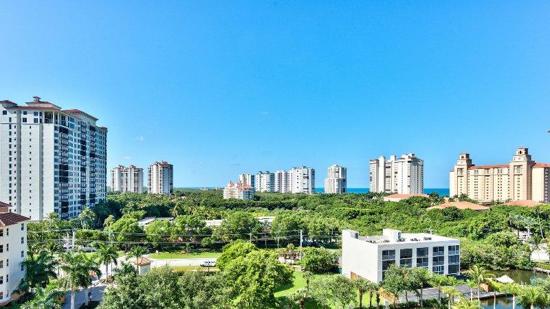 Front View of Naples Area Compreso il Ritz Carlton e il Golfo del Messico; Viste mozzafiato!