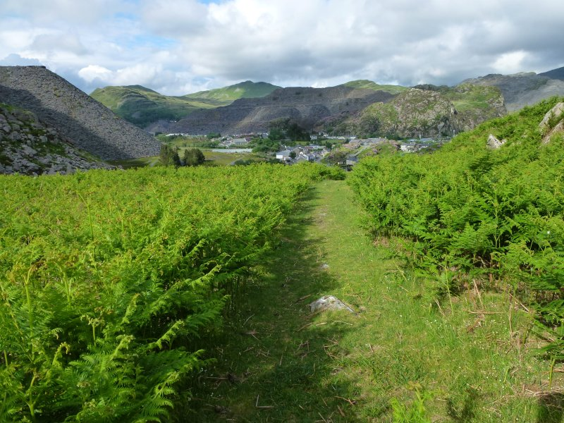 Step from the doorstep straight onto the mountainside path - perfect for those quick dog walks!