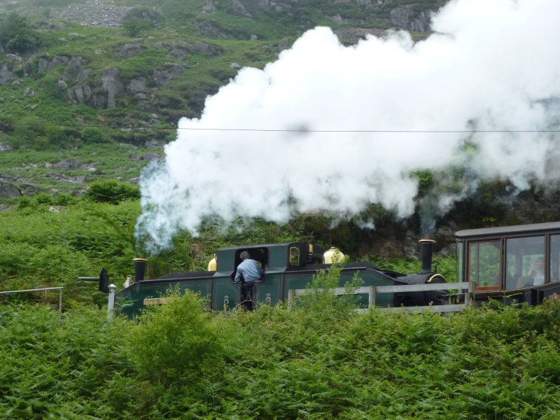 Hop on the Ffestiniog Railway or watch  from nearby the cottage
