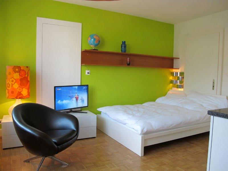 NB Apartment 2: günstige 1-Zimmerwohnung, holiday rental in Zurich
