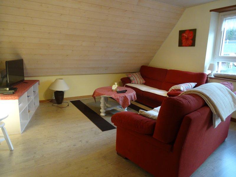salón 2 sofás, mesa de café