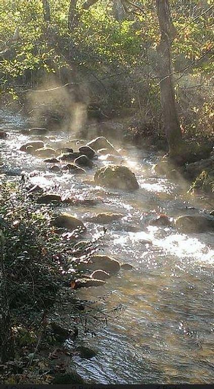 Tessentee Creek, morning mist