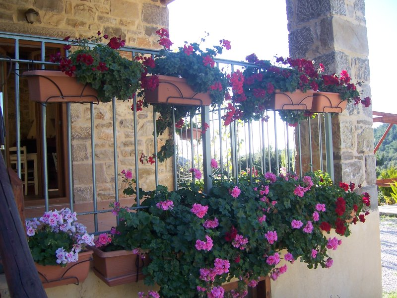 Akros Oreon Green Small Resort, holiday rental in Tsoutsouras