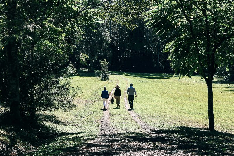 Explore the many walks and tracks of the property.