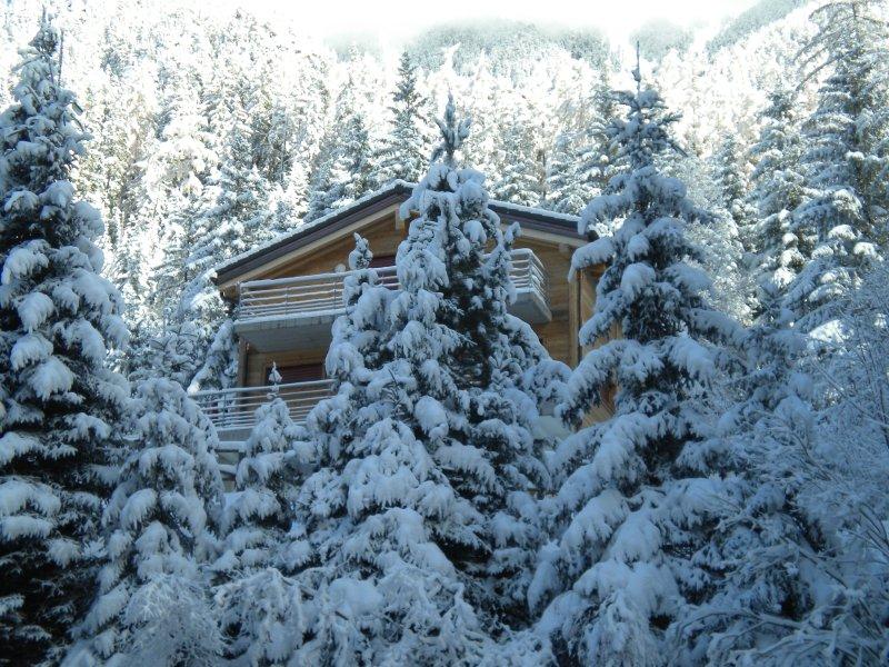Superbe chalet au coeur de la forêt, holiday rental in Bovernier