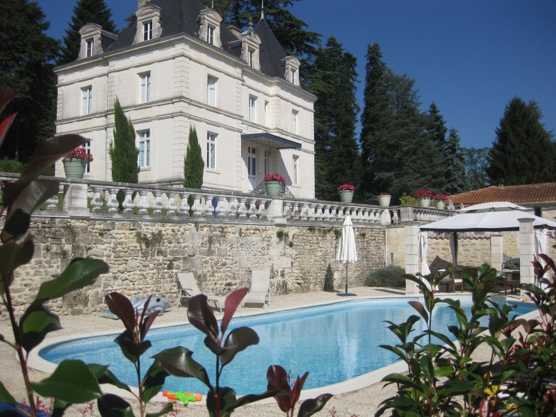 Chateau Du Mas, holiday rental in Voeuil-et-Giget