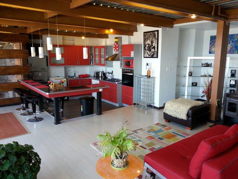 Apartamento Pacífico / Vista Maravillosa al Mar, holiday rental in Renaca