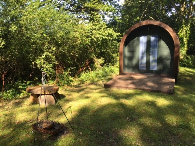 Charming Eco Pod in secluded wooded paddock in he heart of the South Downs National Park