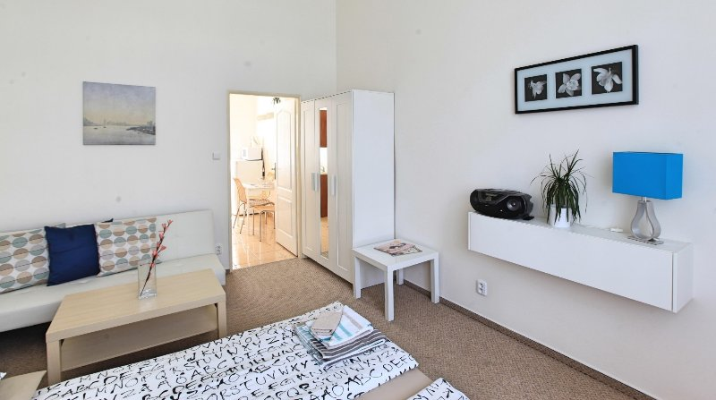 ACA apartment 6 Ostrovského, holiday rental in Jiloviste