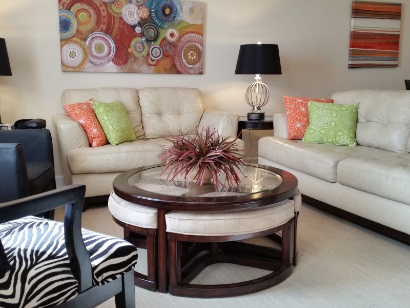Bright and Contemporary Furnishings