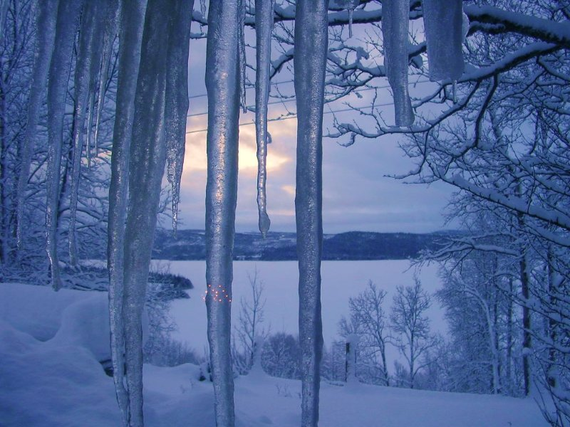 An icecold January look through the window at Storhyta