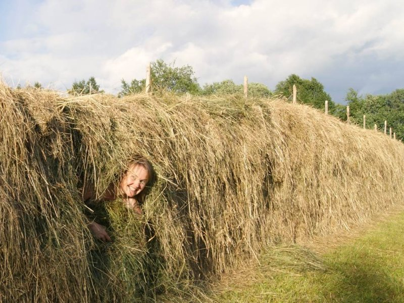 The host and farmer, Gunn Anita, is just checking if the hay has dried for the winter