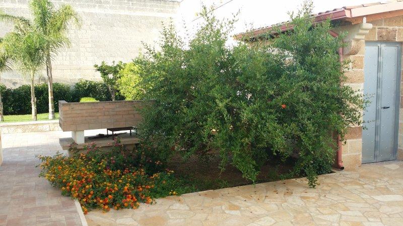 Particolare giardino: albero di melograno con lantane e barbecue