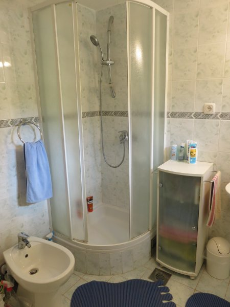 The bathroom with the shower and bidet