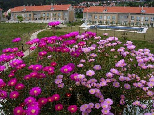 Exclusive Apartment Santiago de Compostela, holiday rental in Negreira
