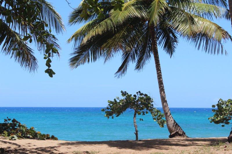 La plage à couper le souffle Sea Horse Ranch à côté de club de plage privé de la résidence.