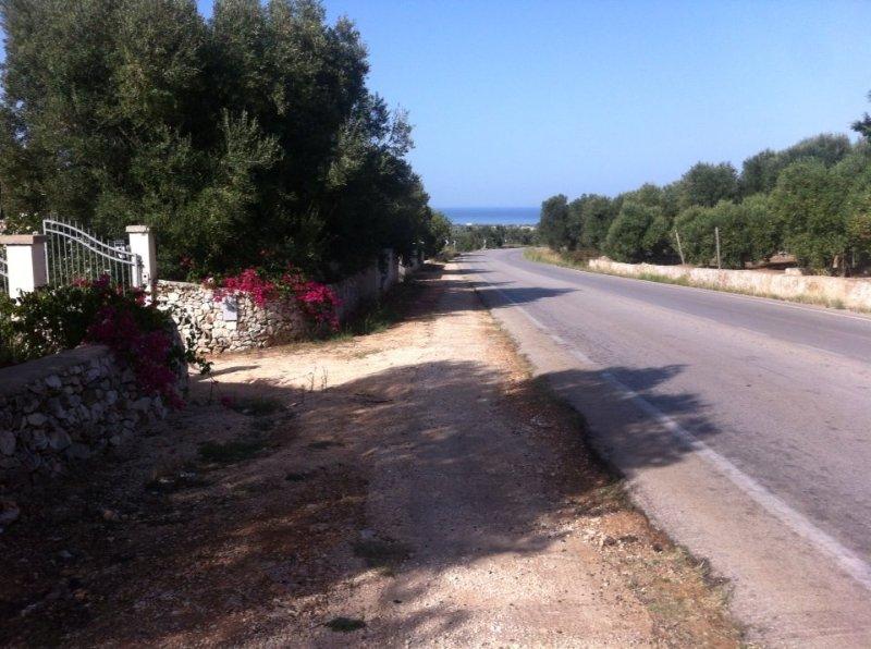 Le case tra gli ulivi Casa  B  3 posti letto,con supplemento lettino aggiuntivo, vacation rental in Carovigno