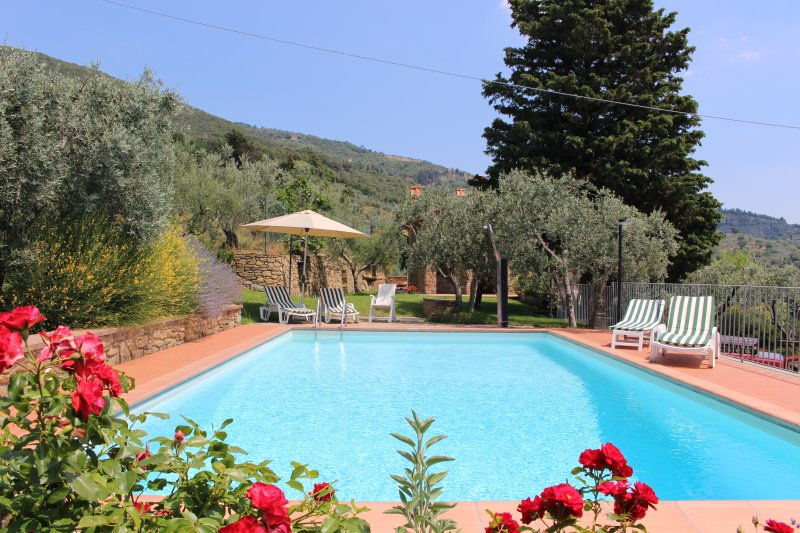 Private pool under the Tuscan sun