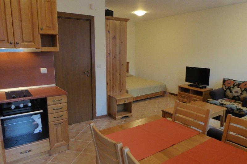 Studio Nest in Pirin Golf & Country Club, alquiler vacacional en Blagoevgrad