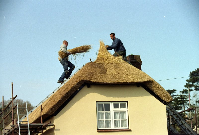 Thatchers at work on the roof in 2015
