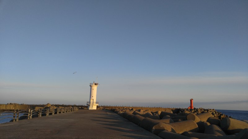 Neighboring red and white lighthouses and seagull in fly-by. You can walk there.