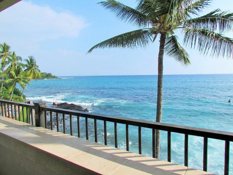 vue-180 degrés sans obstacle de Breathtaking vue sur l'océan! Les dauphins, les surfeurs, les baleines, les tortues, les couchers de soleil!