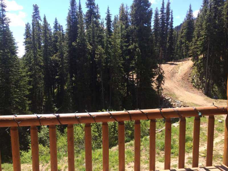 View from deck (summer time)