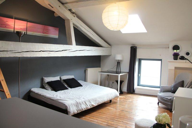 Grand studio de charme cœur de ville pour 2 à 4, location de vacances à Villenave D'ornon