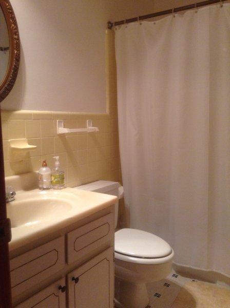 Guest bathroom-view #2.