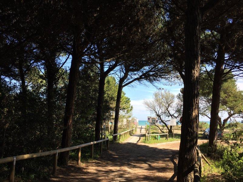 Strada per il mare