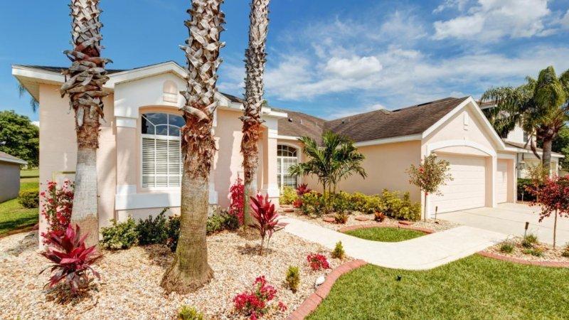 Building,Palm Tree,Tree,Flower,Flower Arrangement