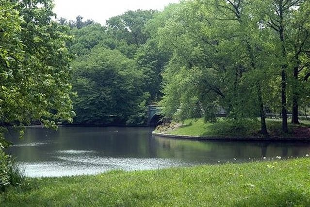 Beautiful Prospect Park is 10 min walk from the apartment
