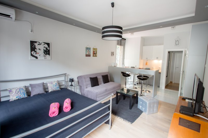 Lea Studio - Promo! Brand New! Center, clean,quiet, vacation rental in Belgrade
