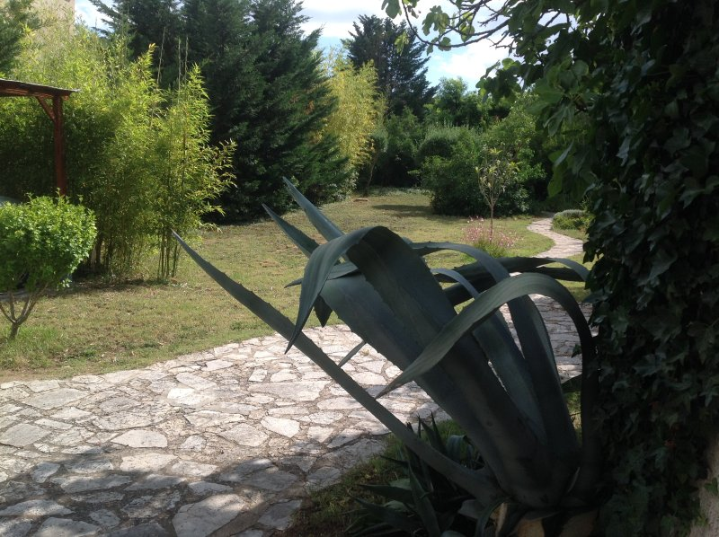 vue sur jardin (espace propriétaire)