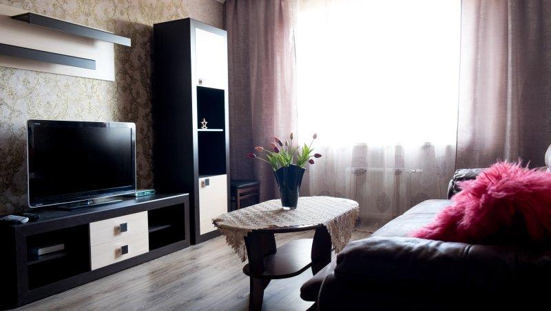 НОВЫЕ АПАРТАМЕНТЫ В ЦЕНТРЕ ГРОДНО, holiday rental in Belarus