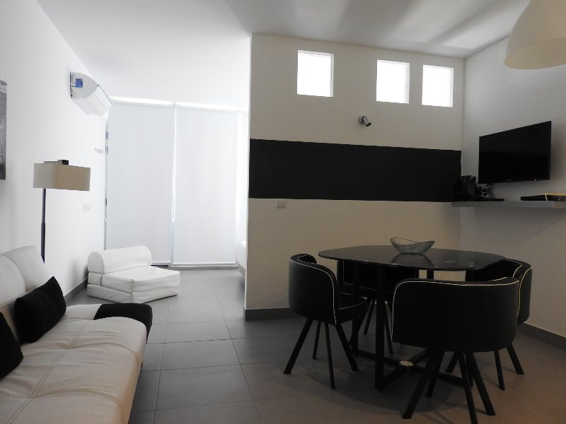Overall view of the apartment as you walk in with living/dinning area and bedroom past the wall