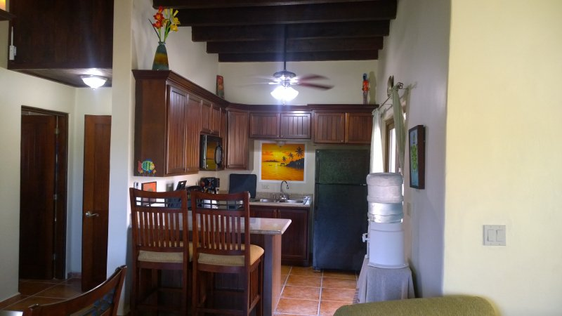 Full kitchen with local artwork and curtains installed.