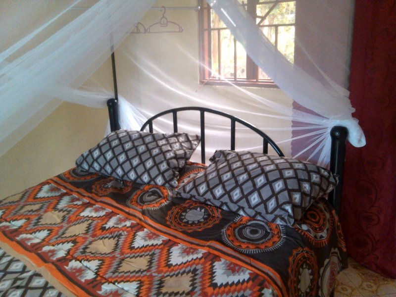Queen bed executive with silk bed sheets, pillows, mosquito net for maximum comfort