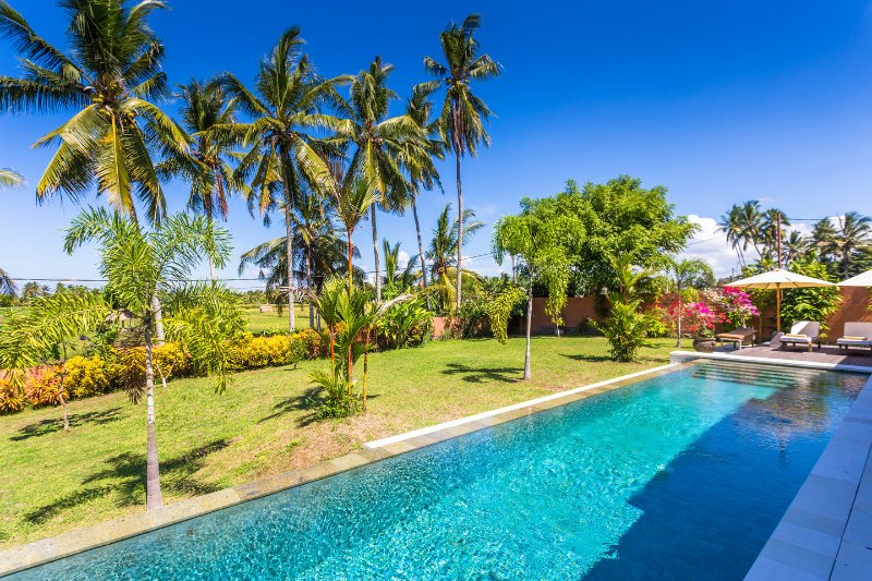 The Pool- Villa Taman Kanti, Ubud, Bali