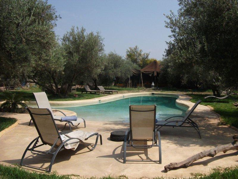 Dar Tougga Riad en exclusivité, holiday rental in Lagouassem