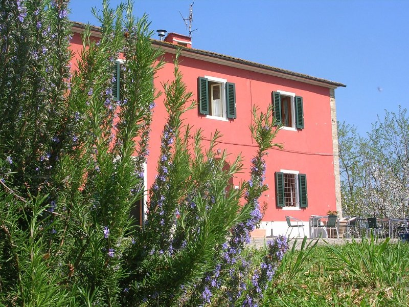 La casa di Marcello - Vinci (Firenze), vacation rental in Mezzana