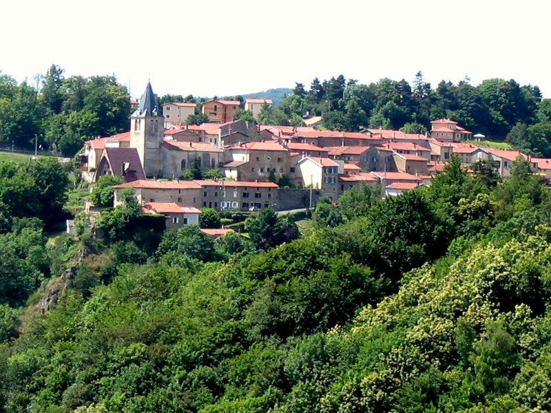 Meublé à YZERON campagne ouest lyon (bleu) 7 couchages, holiday rental in Lyon