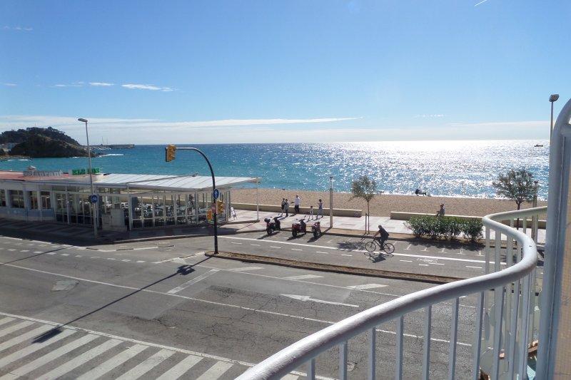 vista desde la terraza del salón- comedor.