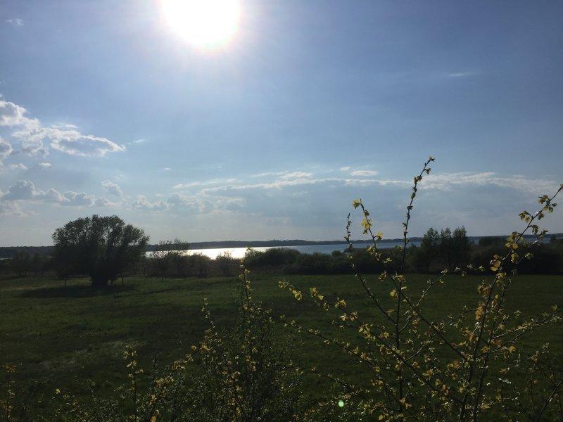Am Grimnitzsee, idyllisch, erholsam und zum Seele baumeln lassen